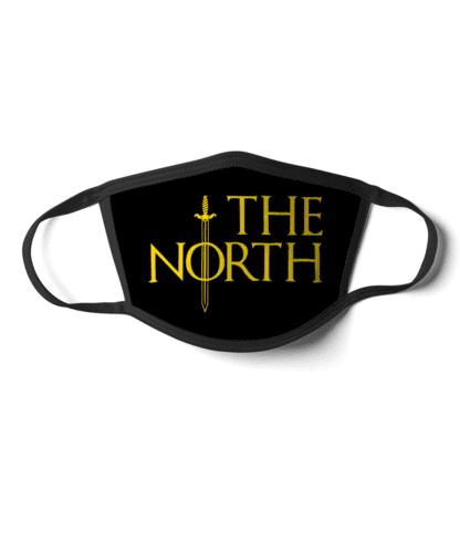 The North face mask